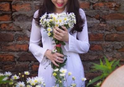 12 mùa hoa rực rỡ ở Hà Nội