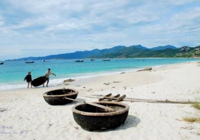 Du lịch đảo Bình Ba 2 ngày 1 đêm
