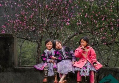 Tour Mai Châu – Mộc Châu – Thung Nai – bản Giang Mỗ 3 ngày