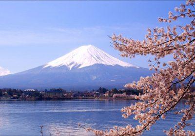 FUKUSHIMA-IBARAKI- TOKYO- NÚI PHÚ SĨ-TOCHIGI- KORIYAMA-FUKUSHIMA