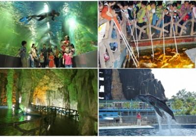 Tour du lịch Thiên đường Bảo Sơn 1 ngày