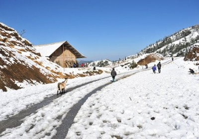 Kinh nghiệm du lịch Sapa ngắm tuyết rơi