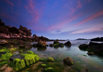 Tour Ninh Chữ – Vịnh Vĩnh Hy – Đảo Bình Hưng 3 ngày 2 đêm